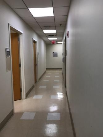 Suddenly Mad- hallway Pearl Barlow Feb 26, 2018