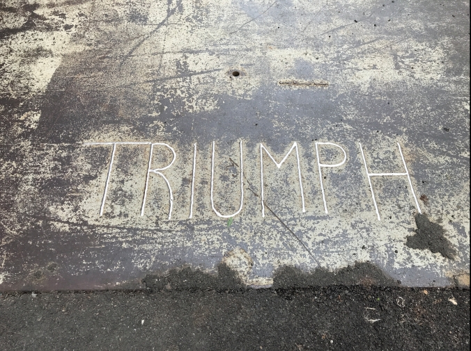 Suddenly Mad- alzheimer's or ALZHEIMER'S and my daily triumphs- TRIUMPH in the sidewalk on 17th St.