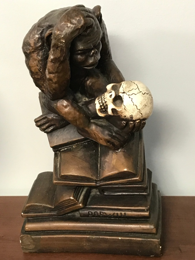 Suddenly Mad- The Daze (Darwin sculpture at osteopaths office)