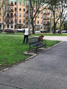 This is my life now with Alzheimer_s Oct 13 Sat walk with my husband in the park )