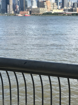 This is my life with Alzheimer_s now - Oct 10 - looking at a seagull in the Hudson River