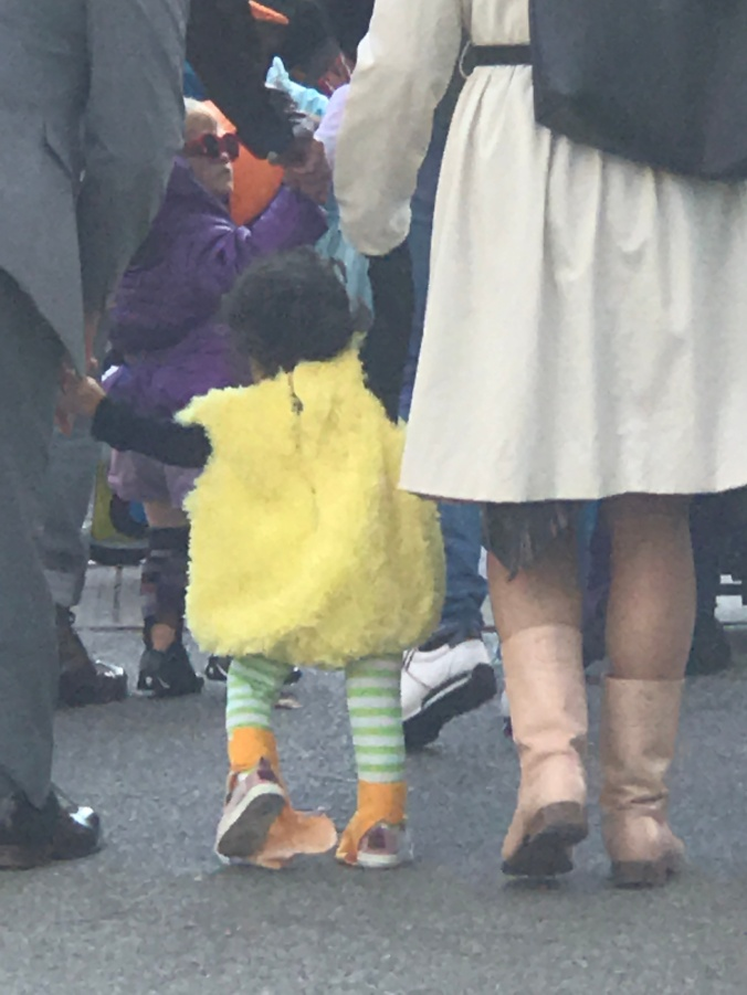 The Beginning, The Middle and The End (Halloween little big bird from behind)